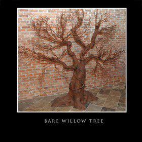 Bare Willow Tree