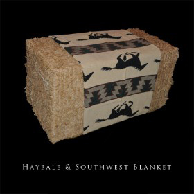 Hay Bale with Southwest Blanket