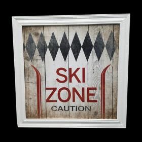 Ski Zone Picture