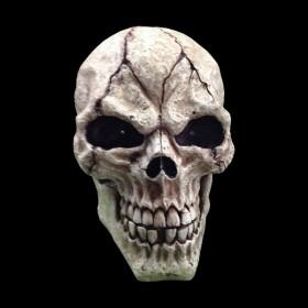 Large Skull Prop